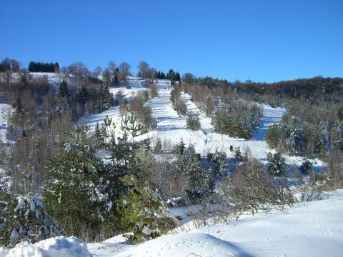 Urlaub bei uns: Freizeit & Aktivitäten in Wolfsberg und Umgebung
